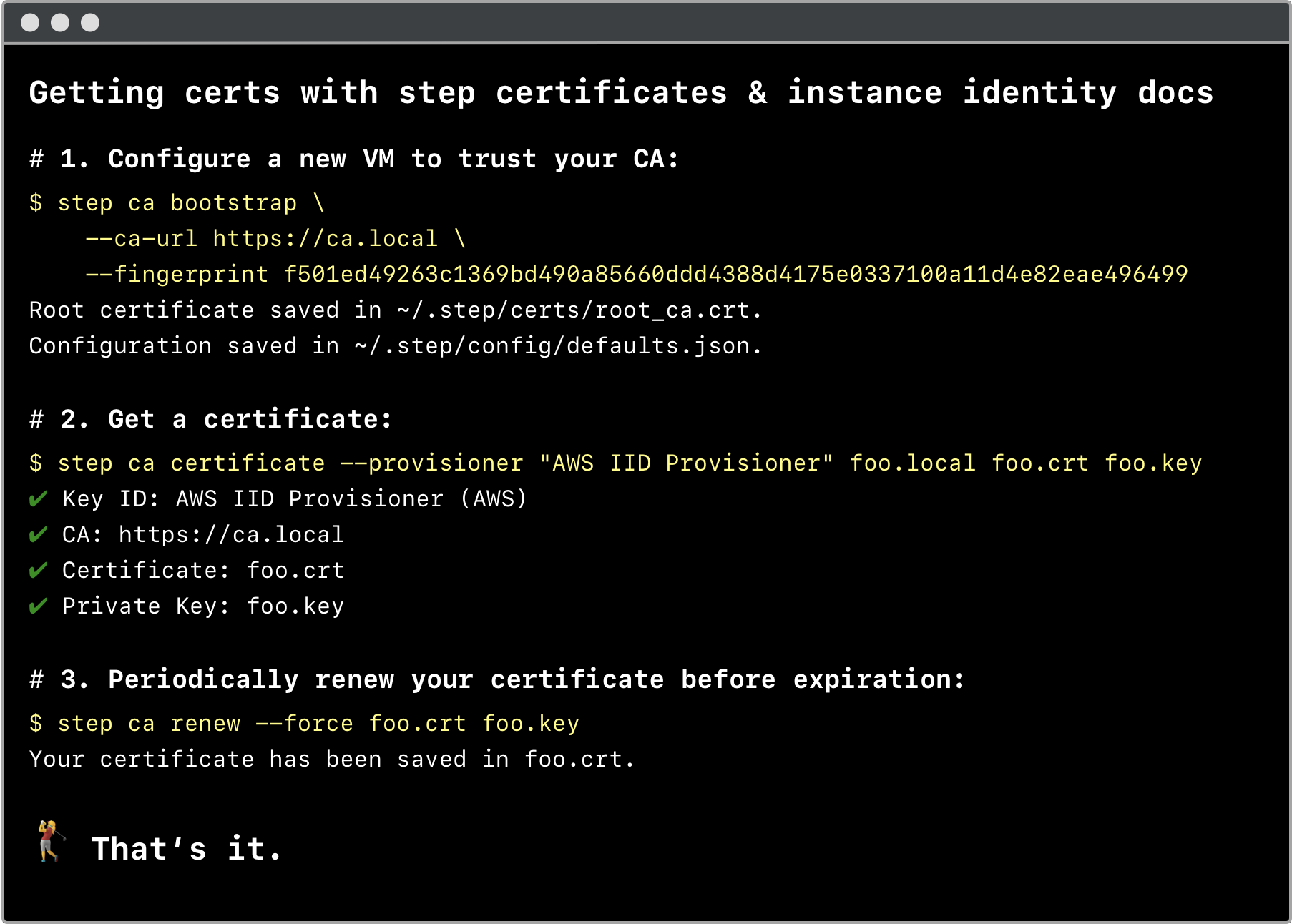 Terminal window showing example of using step certificates with instance identity documents to get a certificate